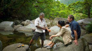 Experience a Kuku Yalanji presentation at Mossman Gorge